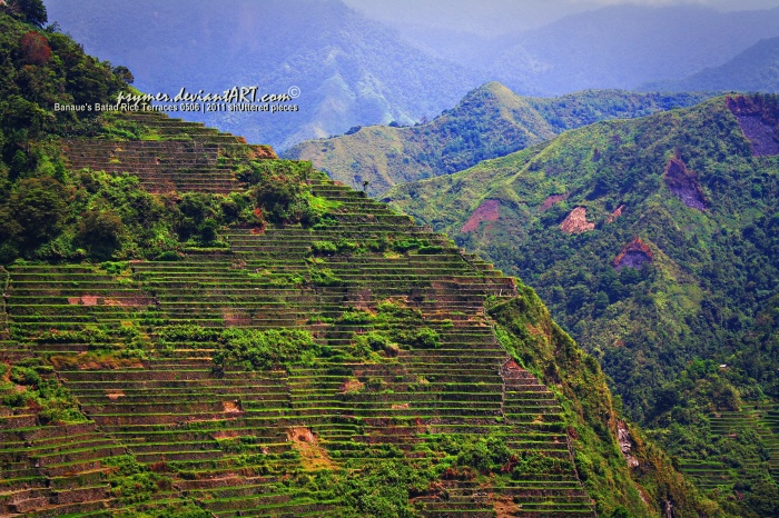 Batad Rice Terraces - click on the image for a full view