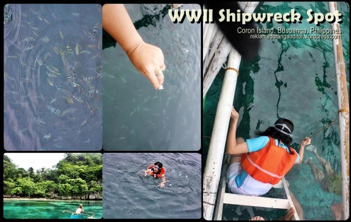 WWII Shipwreck Spot | Coron, Philippines
