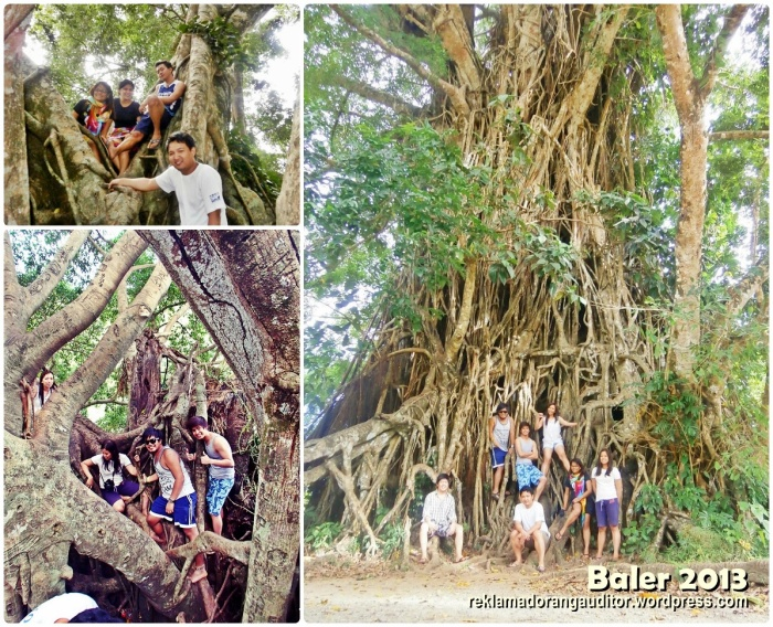 Balete Tree and Us  --click on image for a full view :)